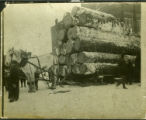 Horse team hauling timber
