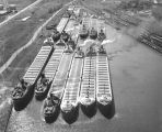 Vessels moored in Municipal Mooring Basin
