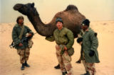 Colin Caldwell, Jr., United States Marine Corps, in the Desert with a Camel