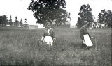 Cornfalfa Farms; Alfalfa Production 226: Two women standing in hay field