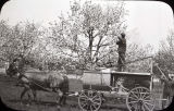 Cornfalfa Farms; Apple Production 043: Spraying apple trees in the Swartz orchard
